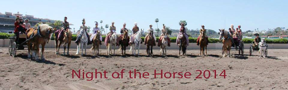 Night of the Horse 2014