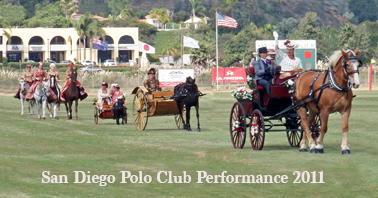 del mar polo performance 2011