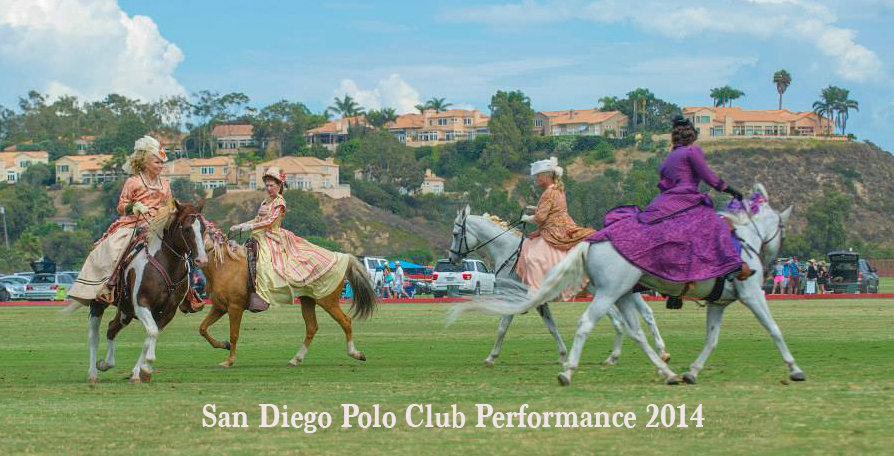 del mar polo club  performance 2014