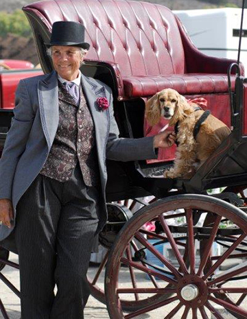 coachman rose with Ricky the Cocker Spaniel